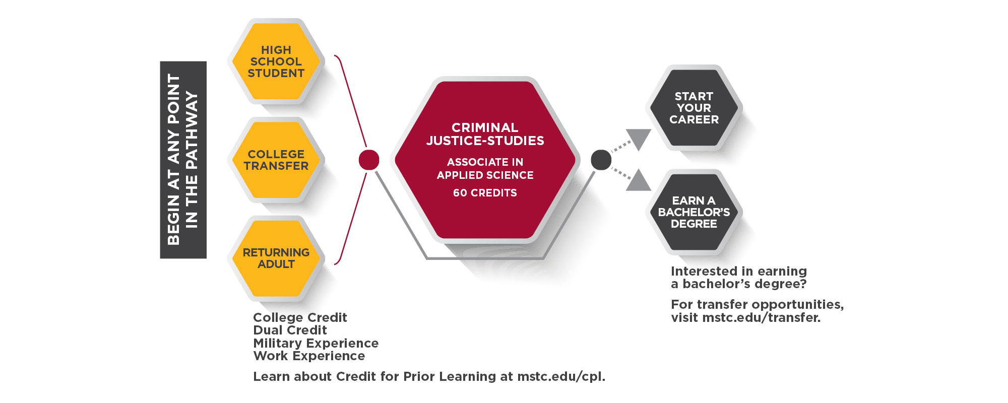 Criminal Justice Studies Pathway Graphic